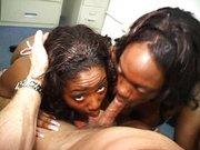 Threesome black sluts sucking cock